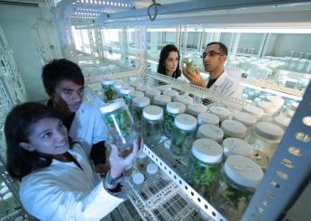 Aziende agroalimentari: Opportunità di assunzione agevolata di PhD – Dottori di Ricerca